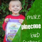 Act of Kindness:  Bird Feeding Pinecones